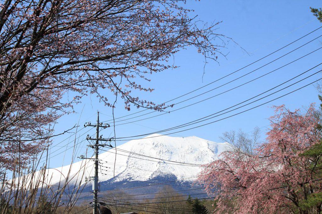春の軽井沢